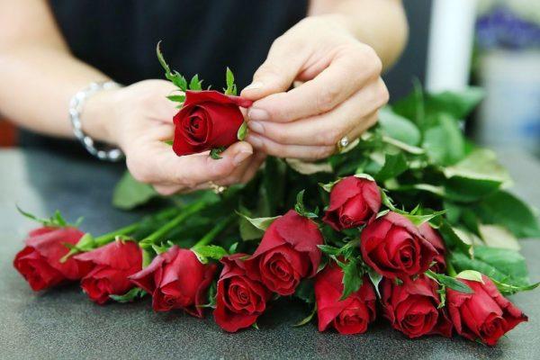 Выбирая розы, пробовать бутон цветка на плотность обязательно!