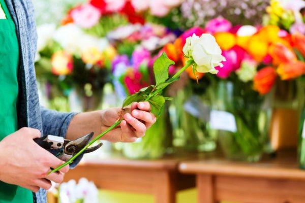 Оставлять стебель нужно подлиннее,чтобы обеспечить цветок запасом питательных веществ