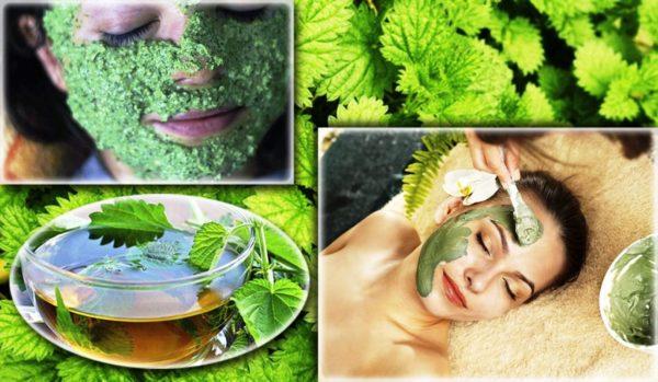 Польза крапивы для кожи лица