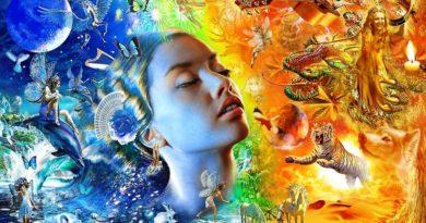 Толкование странных снов 13-ти знаменитостей