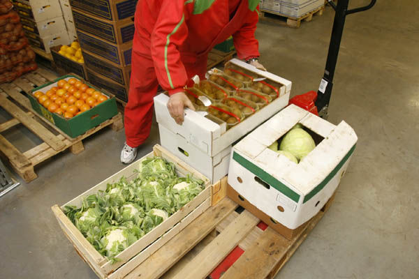 Условия перевозки свежих фруктов и овощей